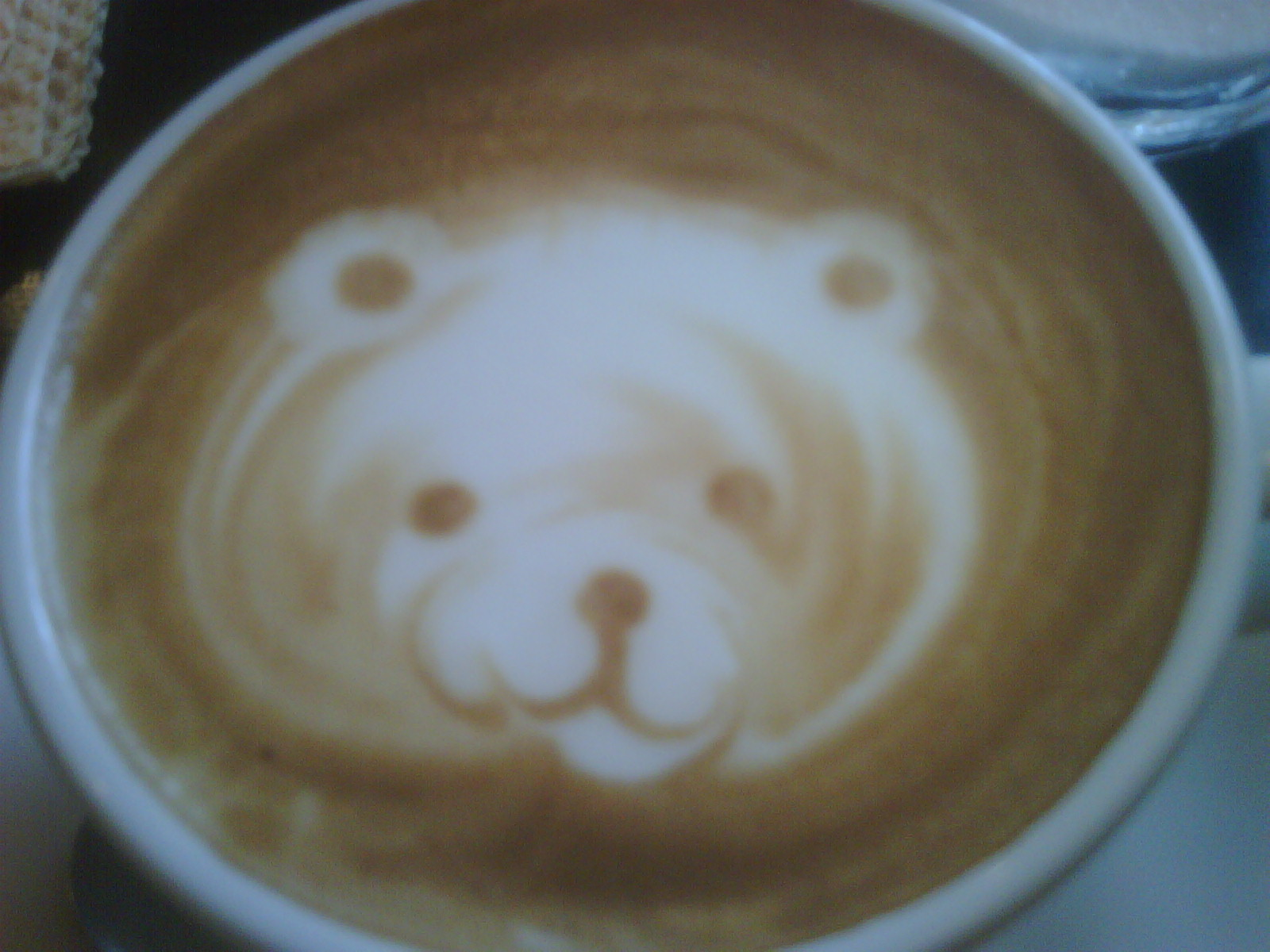bear Coffe.jpg